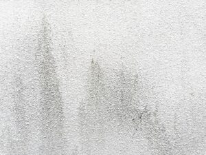 外壁汚れ画像/大阪市住吉区・東住吉区の外壁・屋根塗装専門店 ペイントプロ
