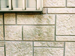 外壁カビ画像/大阪市住吉区・東住吉区の外壁・屋根塗装専門店 ペイントプロ
